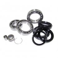 Differential Bearing And Seal Kits