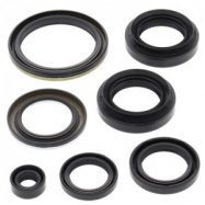 Engine Oil Seal Kits