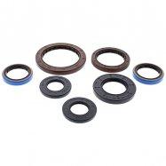 Engine Oil Seal Kit | Polaris 900 Diesel | 2011-14